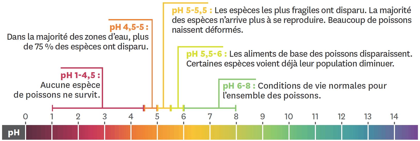 <stamp theme='pc-green1'>Doc. 5</stamp> Échelle de pH avec les conséquences sur la mortalité des poissons.