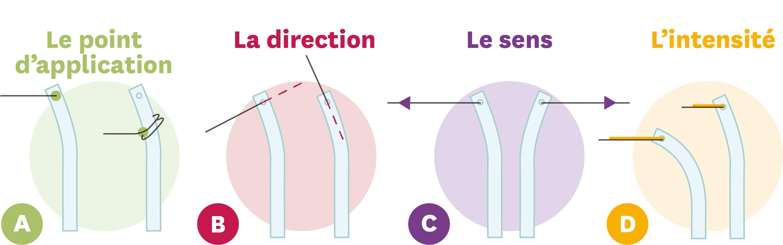 <stamp theme='pc-green1'>Doc. 2</stamp> Quatre informations importantes pour décrire l'action mécanique qui déforme la baguette souple.