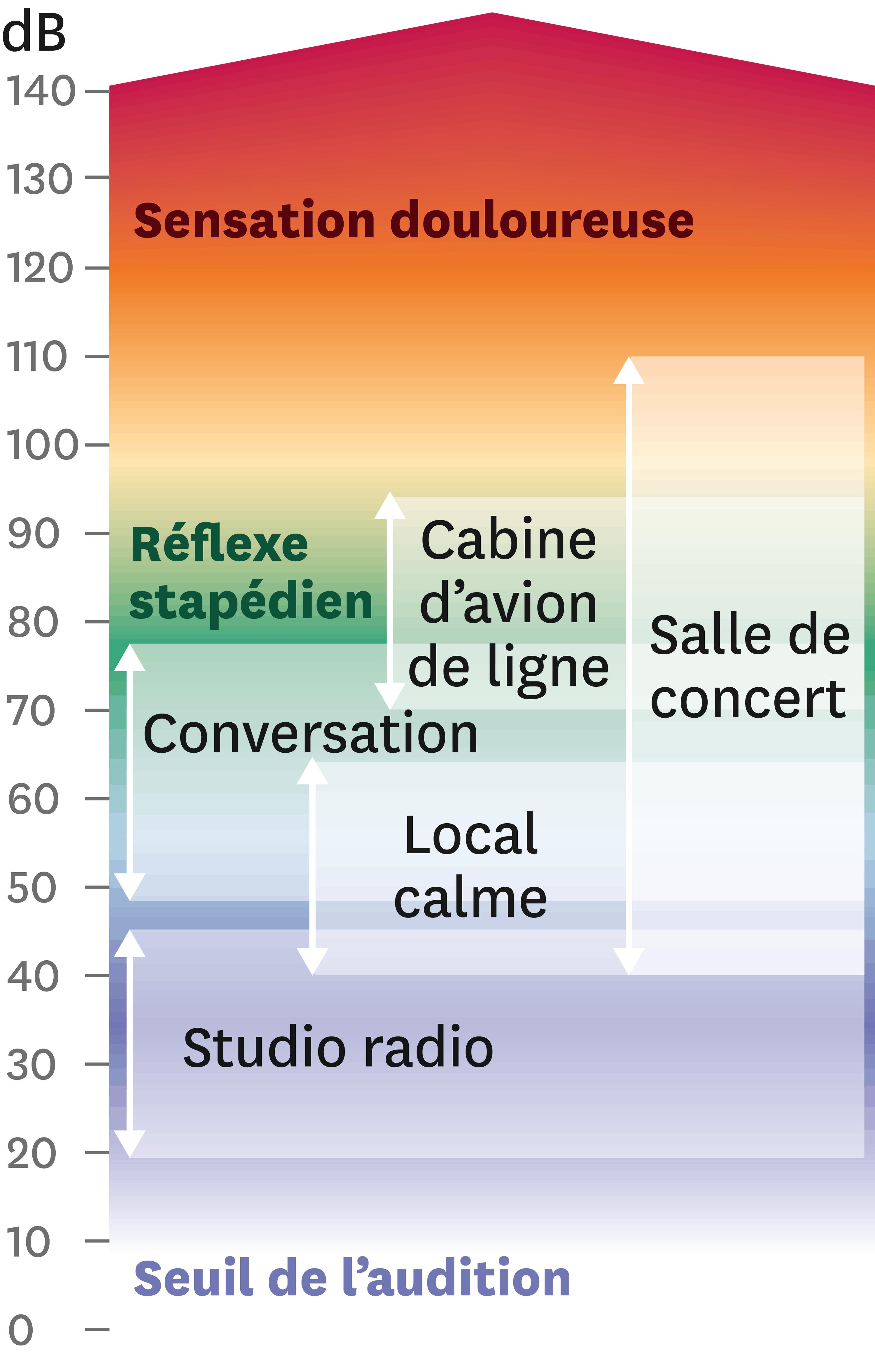<stamp theme='pc-green1'>Doc. 1</stamp> Échelle des niveaux sonores en dB.