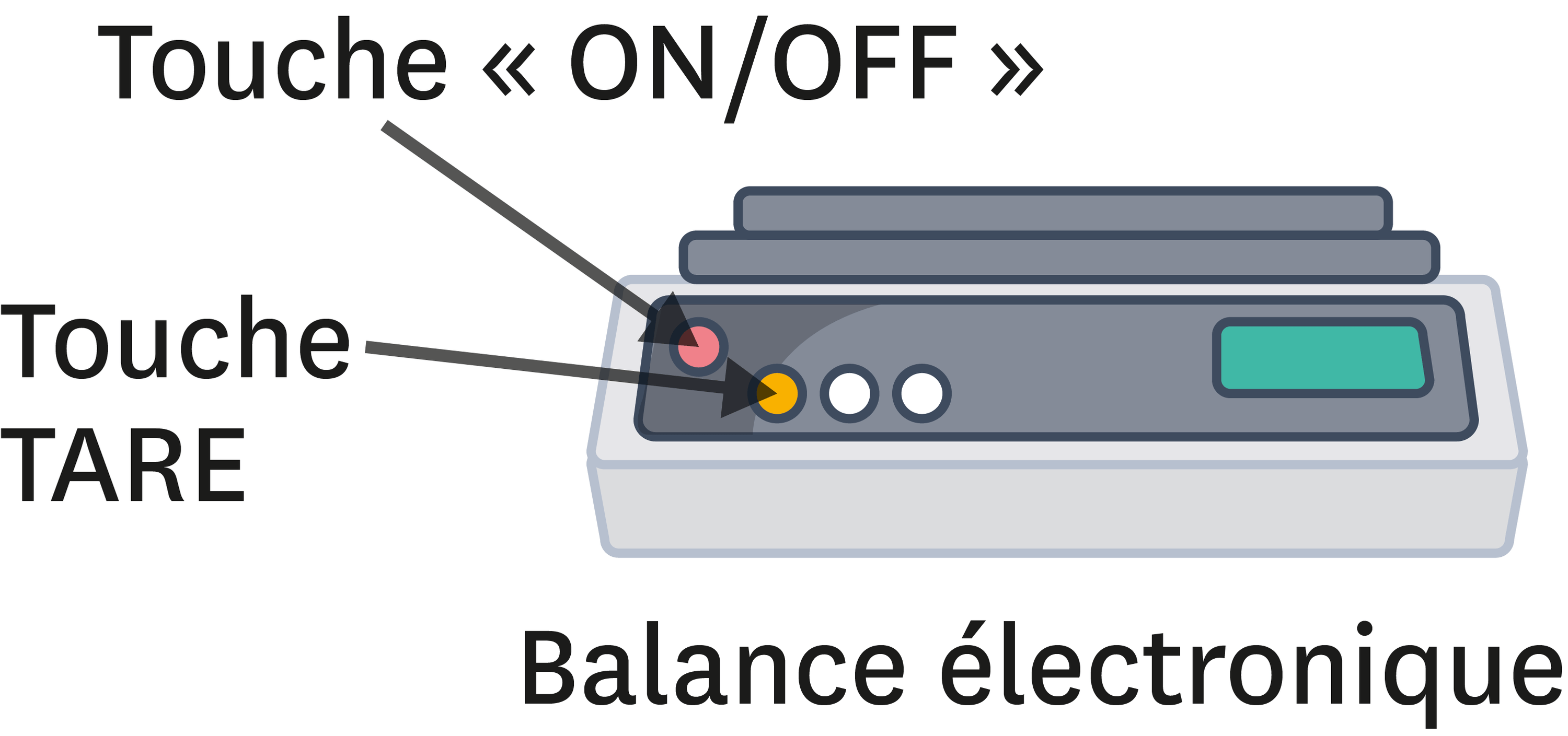 <stamp theme='pc-green1'>Doc. 2</stamp> Une balance électronique