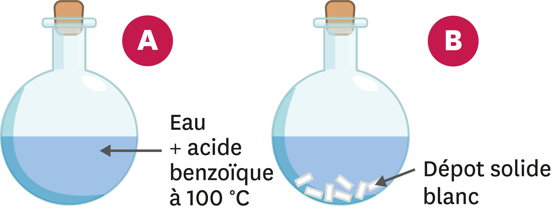 <stamp theme='pc-green1'>Doc. 4</stamp> Acide benzoïque.