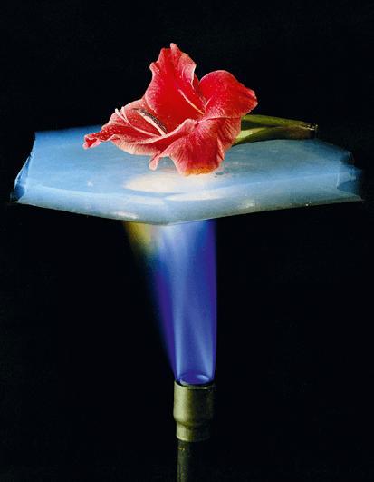 PC Tel - chapitre 16 - Bilans d'énergie thermique - exercice 45 - Fleur sur de l'aérogel chauffé