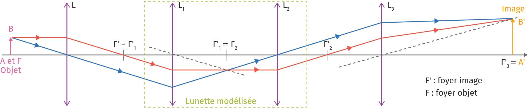PC Tle - chapitre 19 - Lunette astronomique - Activité expérimentale - Doc 3 - Montage de mesure du grossissement d'une lunette