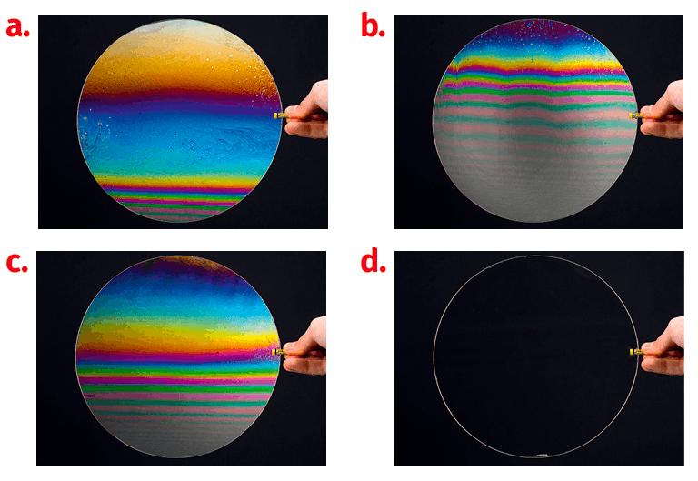 Évolution d'une bulle de savon
