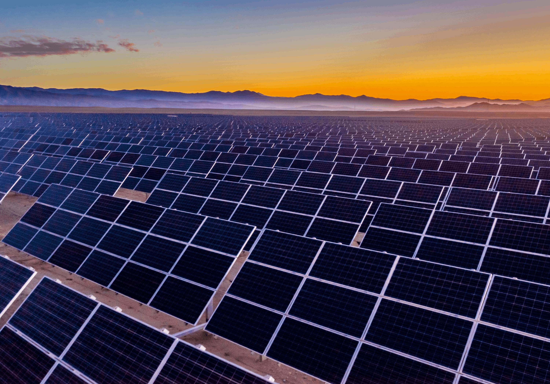 Champ de panneaux solaires