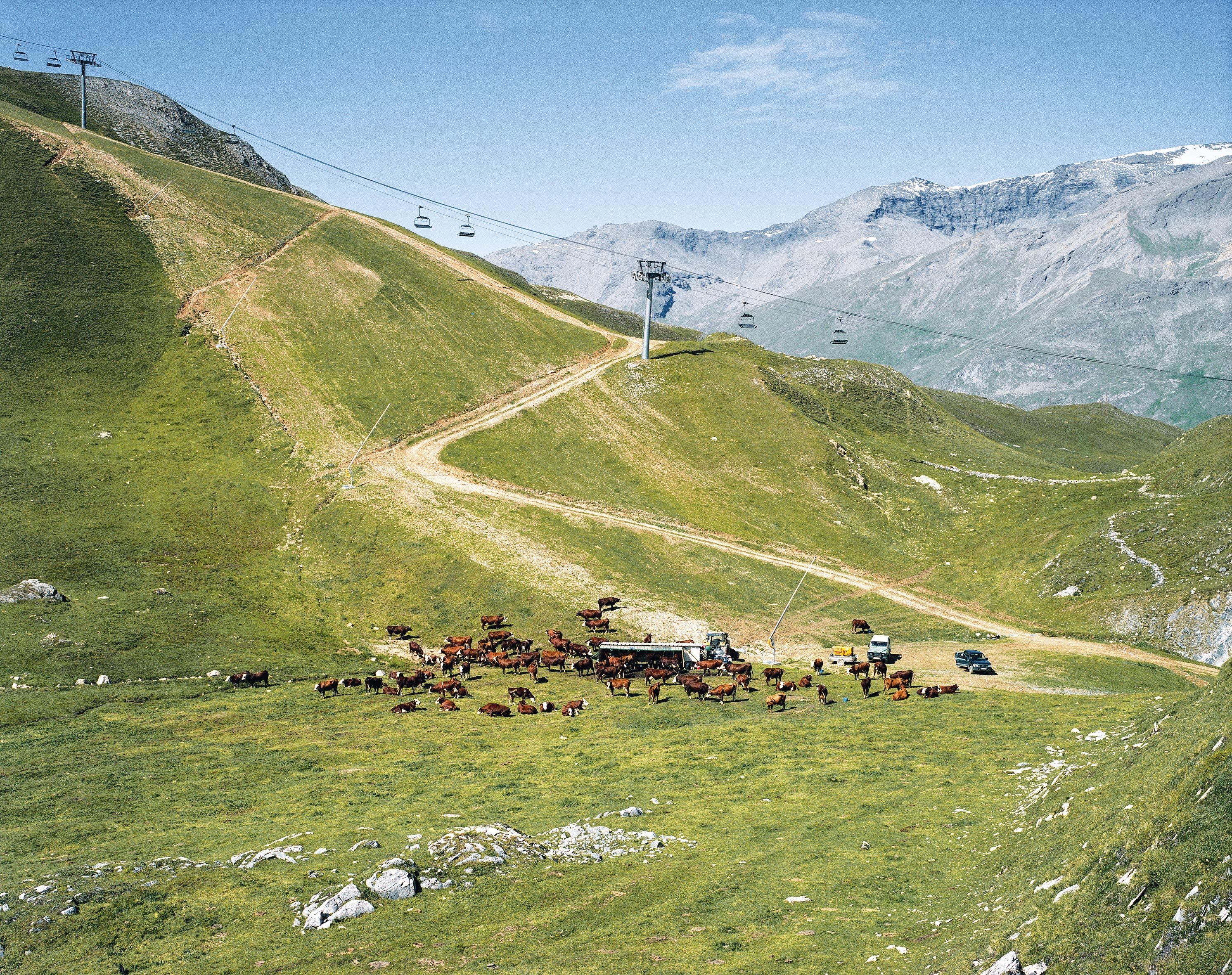 <stamp theme='his-green2'>Doc. 3</stamp> Un éleveur et son troupeau dans l'alpage à Tignes