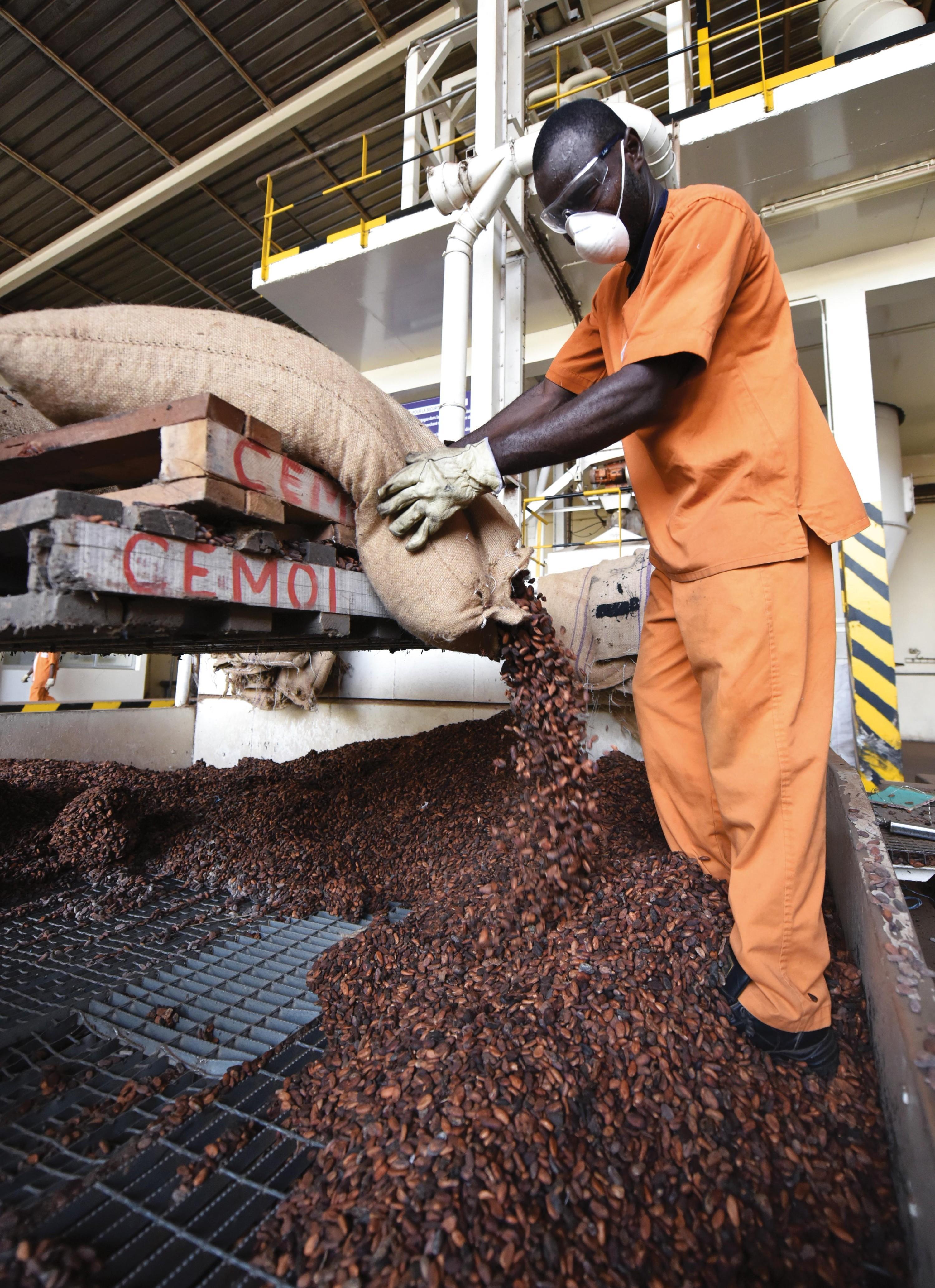 <stamp theme='his-green2'>Doc. 5</stamp> Une usine de transformation du cacao en Côte d'Ivoire