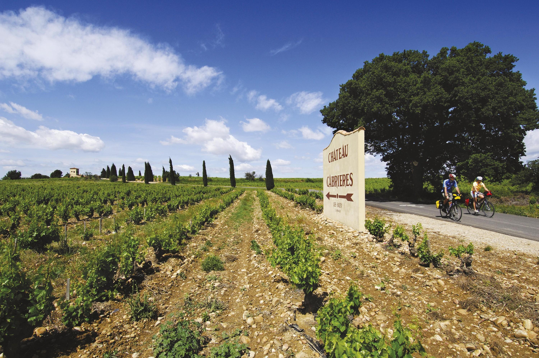 <stamp theme='his-green2'>Doc. 2</stamp> Des vignes en Provence, en France