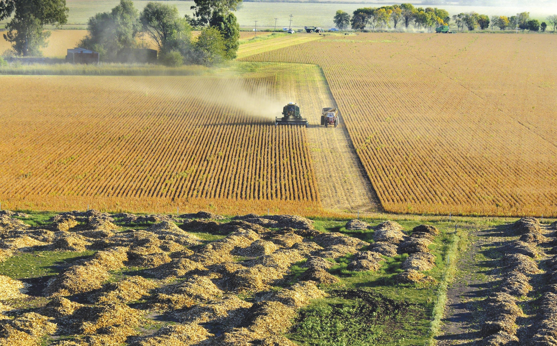 <stamp theme='his-green2'>Doc. 1</stamp> La récolte du soja près de Rojas (Argentine)