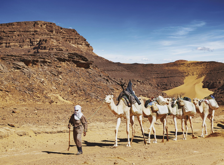 Les déserts chauds ou froids