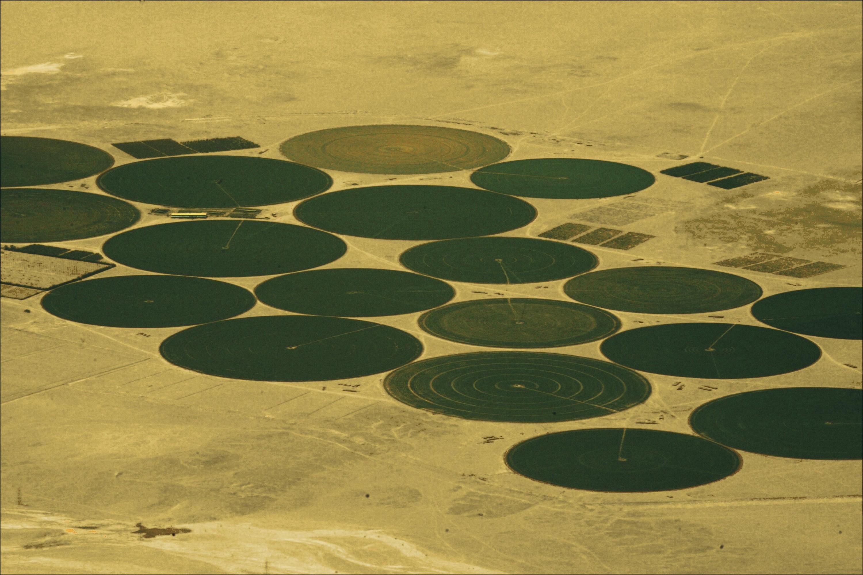 <stamp theme='his-green2'>Doc. 8</stamp> Cultures irriguées dans le désert libyen