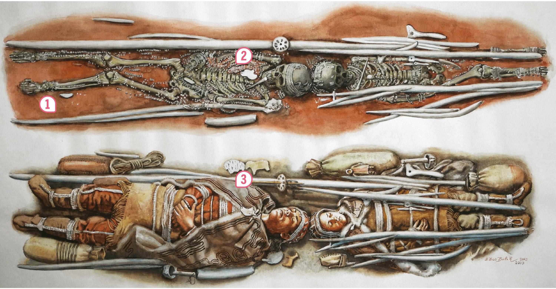 <stamp theme='his-green2'>Doc. 3</stamp> La sépulture de Sungir (Russie), vers 25 000 avant J.-C.