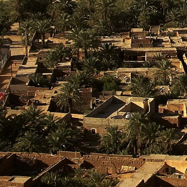 <stamp theme='his-green2'>Doc. 3</stamp> L'oasis de Béni Abbès (Sahara algérien)