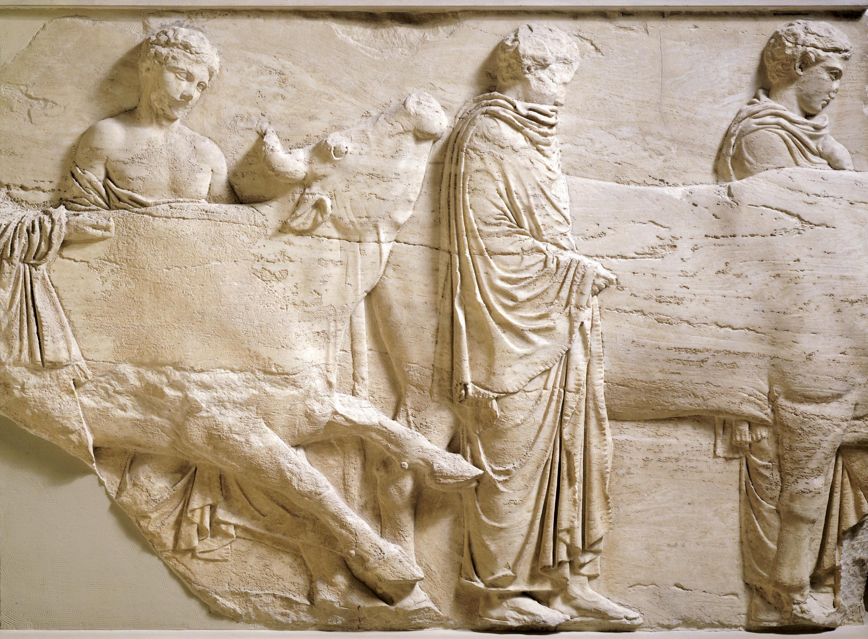 Fragment de la frise des Panathénées : Les bœufs conduits au sacrifice