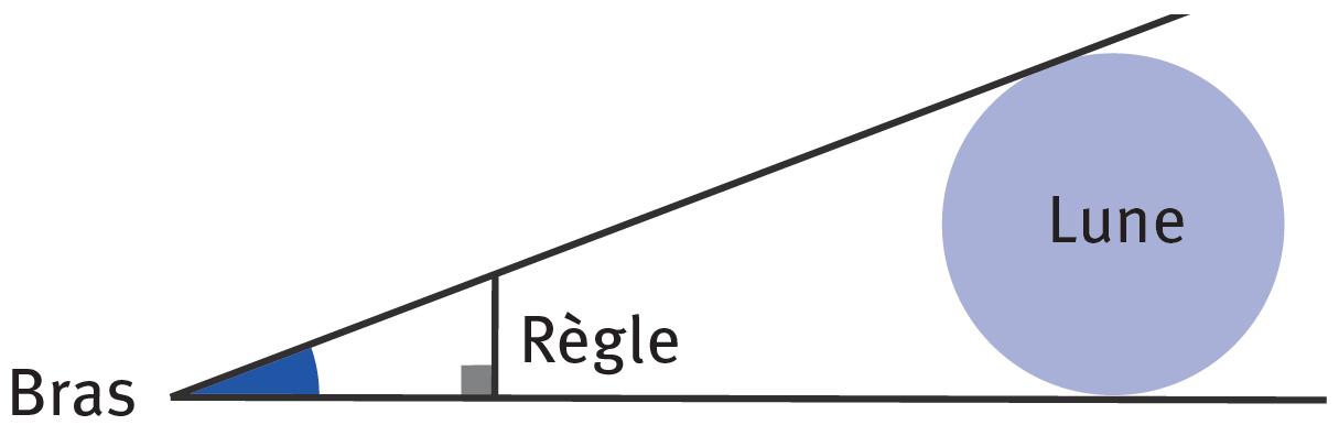 Graphique lié à l'exercice 30