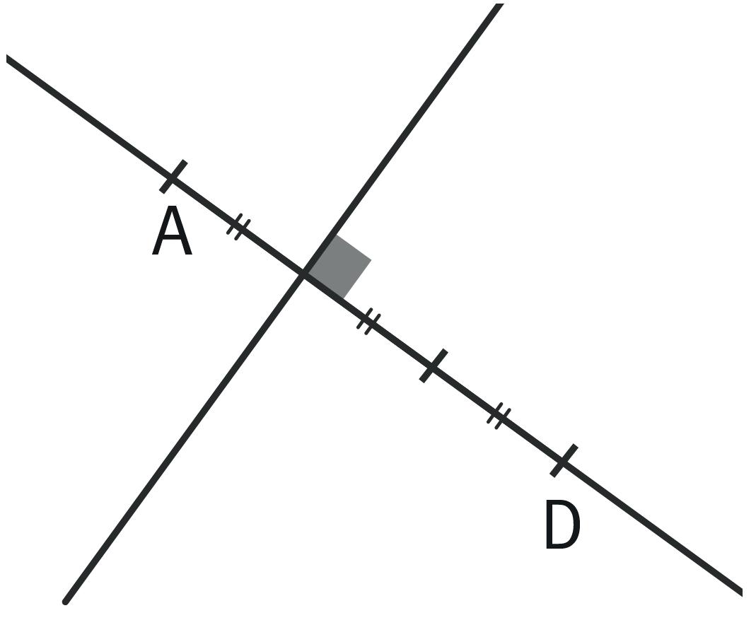 Graphique lié à l'exercice 14
