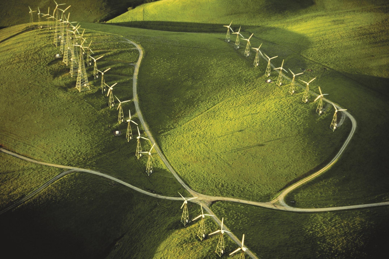 Champ d'éoliennes.