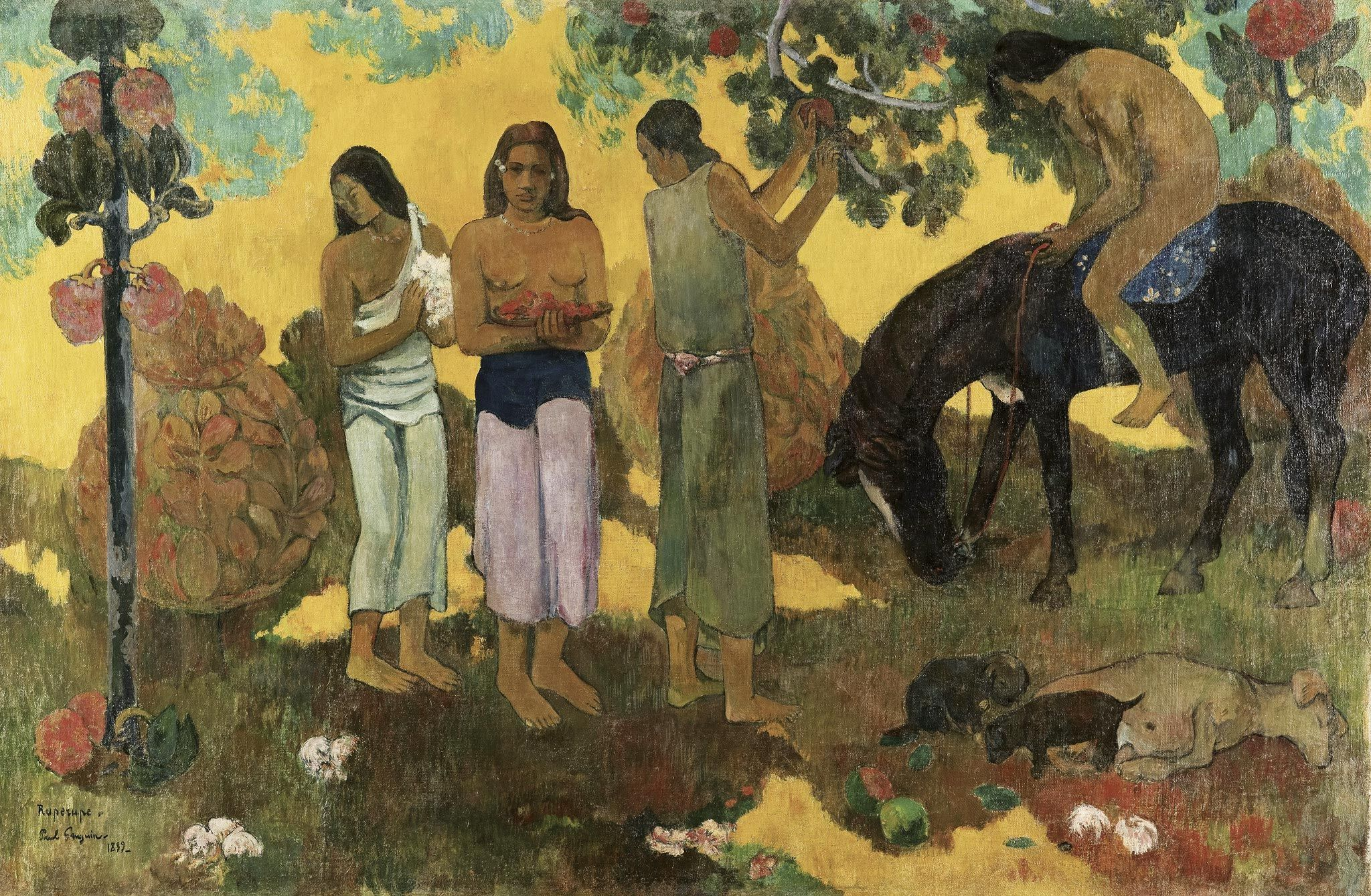 Rupe rupe ou La cueillette de fruits