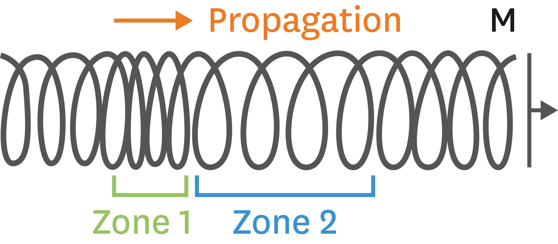 <stamp theme='pc-green1'>Doc. 1</stamp> Propagation d'une onde de compression dans un ressort.