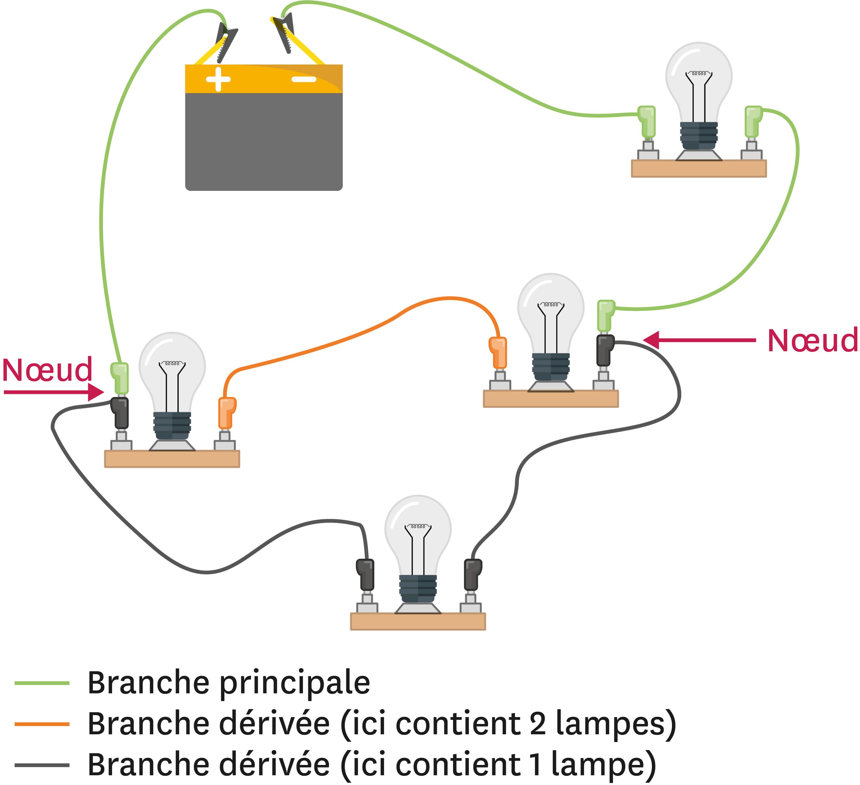 <stamp theme='pc-green1'>Doc. 2</stamp> Les branches dans un circuit électrique.