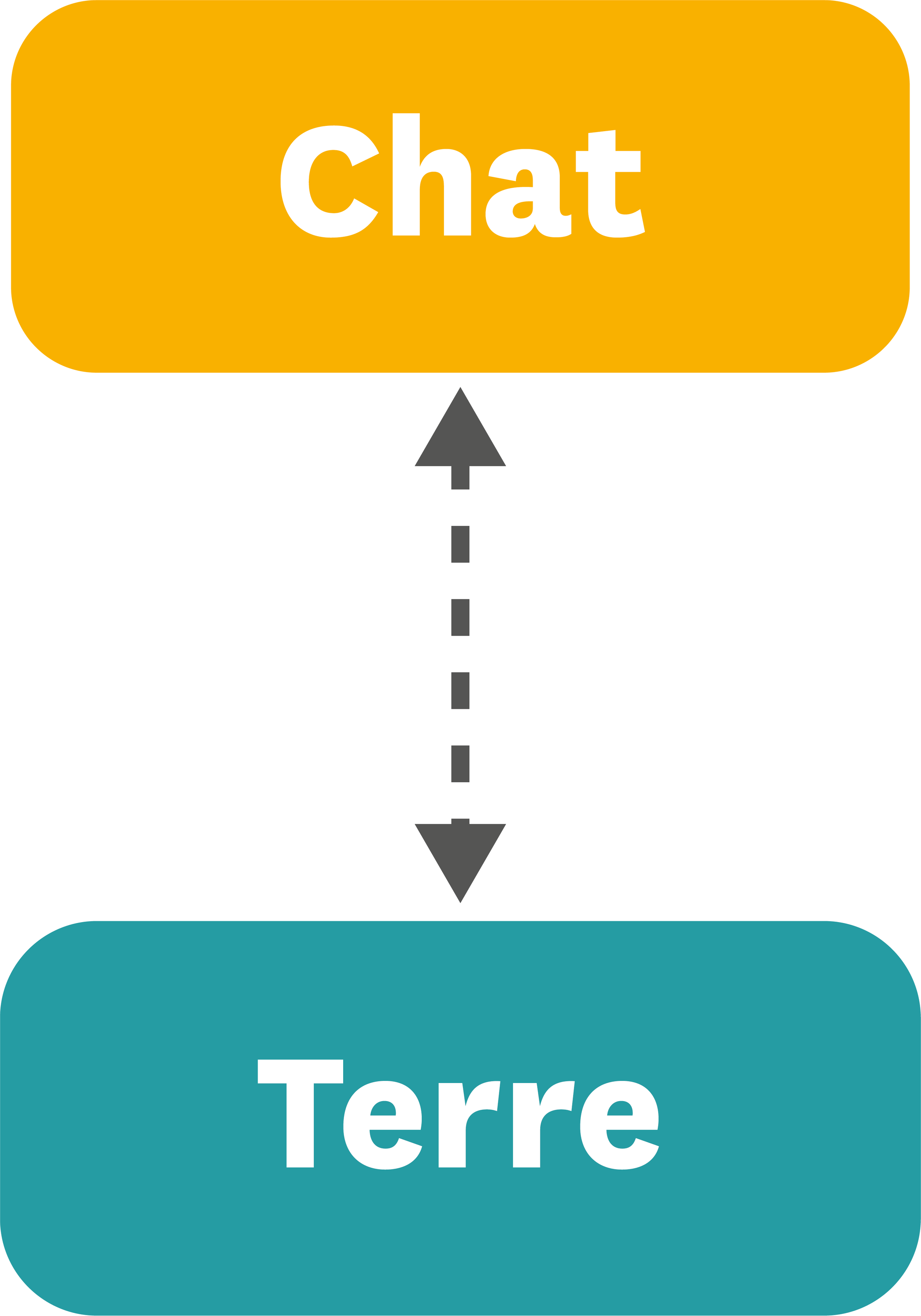 <stamp theme='pc-green1'>Doc. 2</stamp> Chat - Terre.