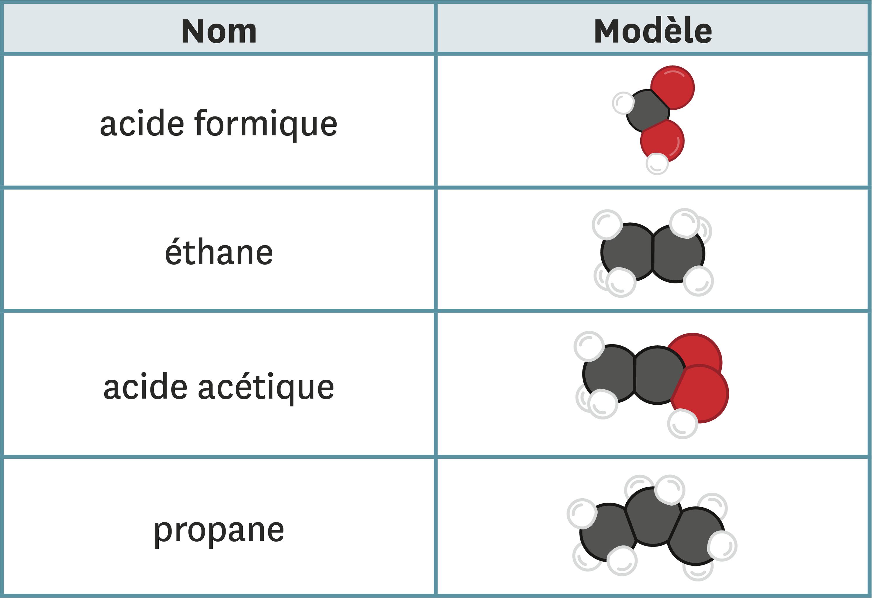<stamp theme='pc-green1'>Doc. 4</stamp> Modèle et formule.