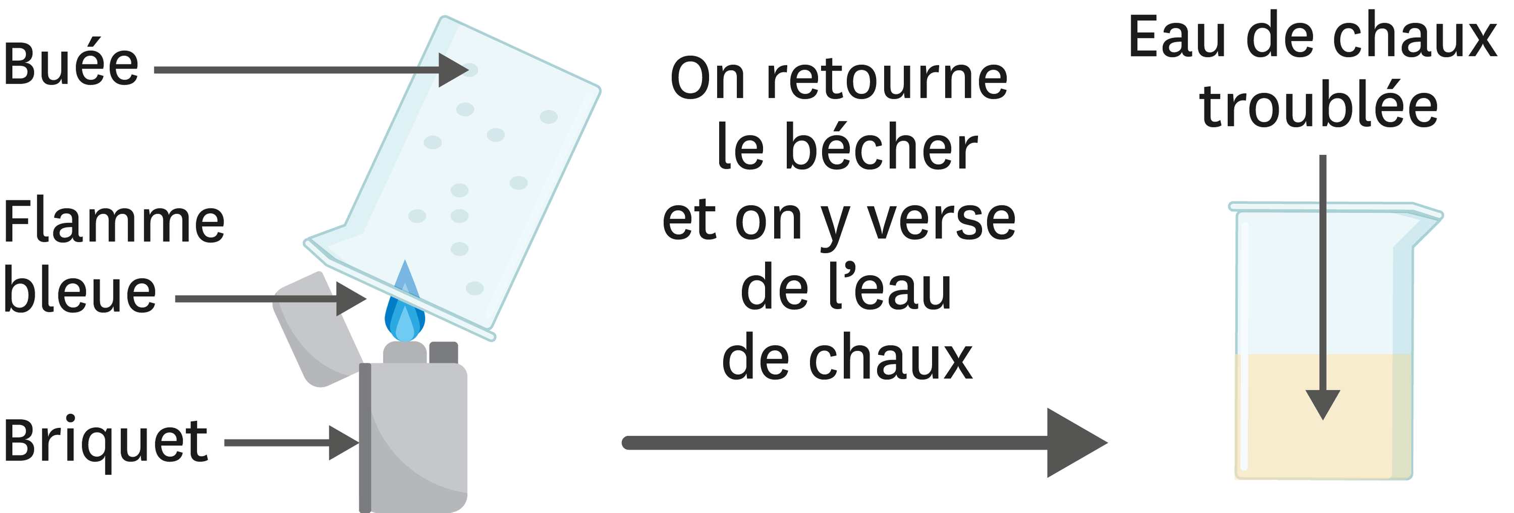 <stamp theme='pc-green1'>Doc. 3</stamp> Analyse une expérience.