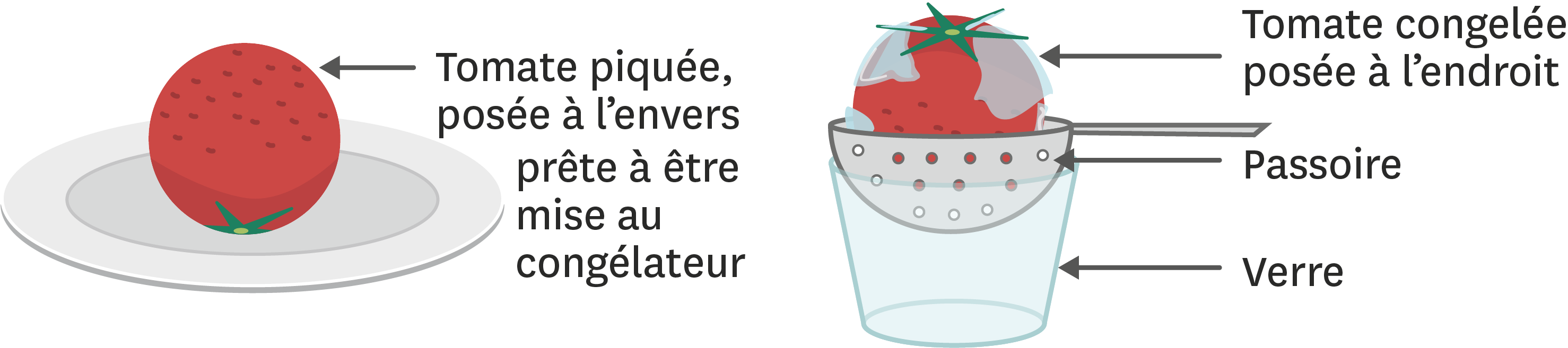 <stamp theme='pc-green1'>Doc. 1</stamp> Faire du jus de tomate incolore.