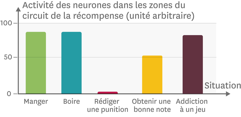 <stamp theme='svt-green1'>Doc. 8</stamp> L'activité des neurones du circuit de la récompense.