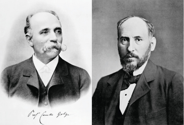 <stamp theme='svt-green1'>Doc. 1</stamp> Camillo Golgi (à gauche) et Ramón y Cajal (à droite).