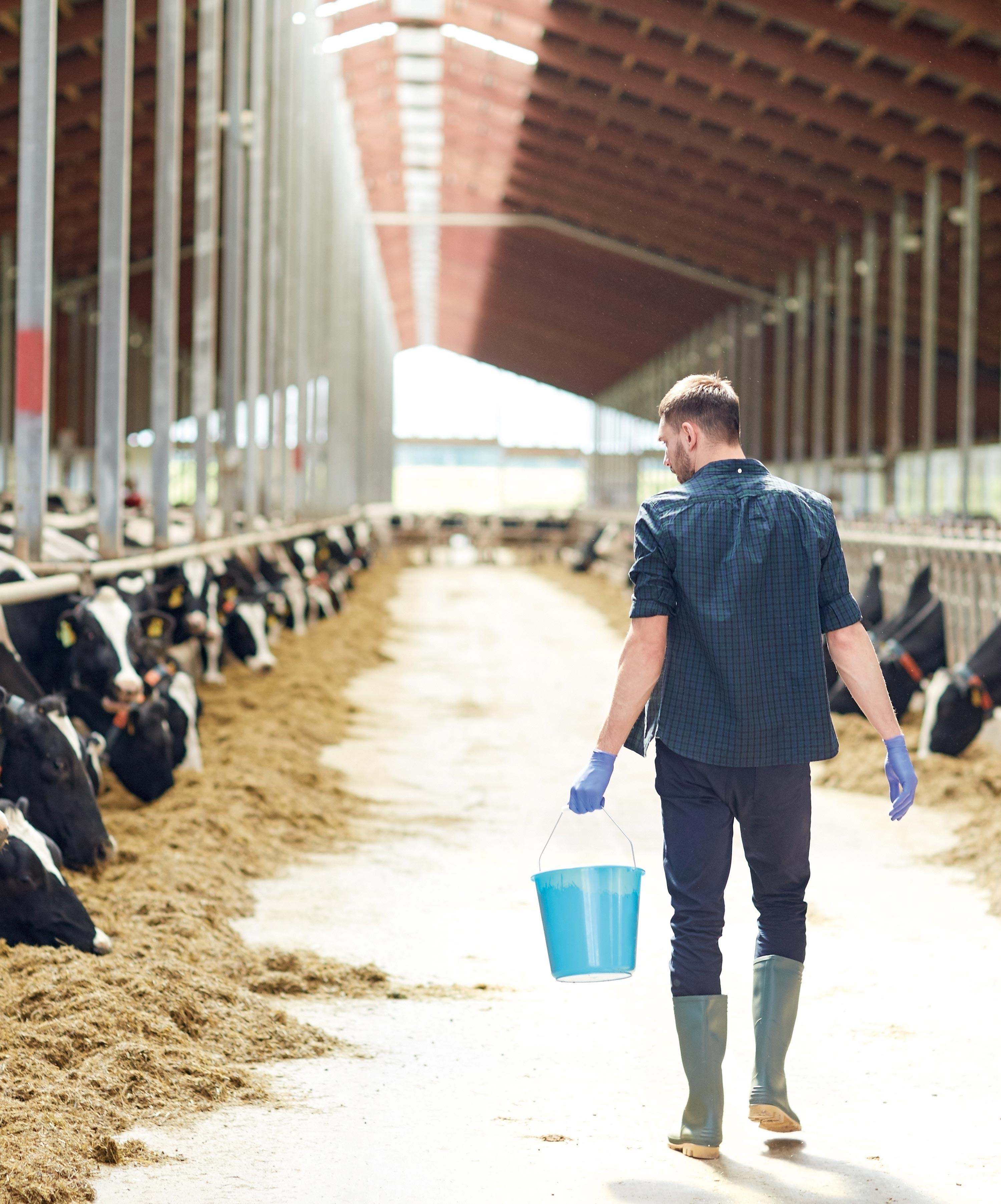 David M. : produire des aliments.
