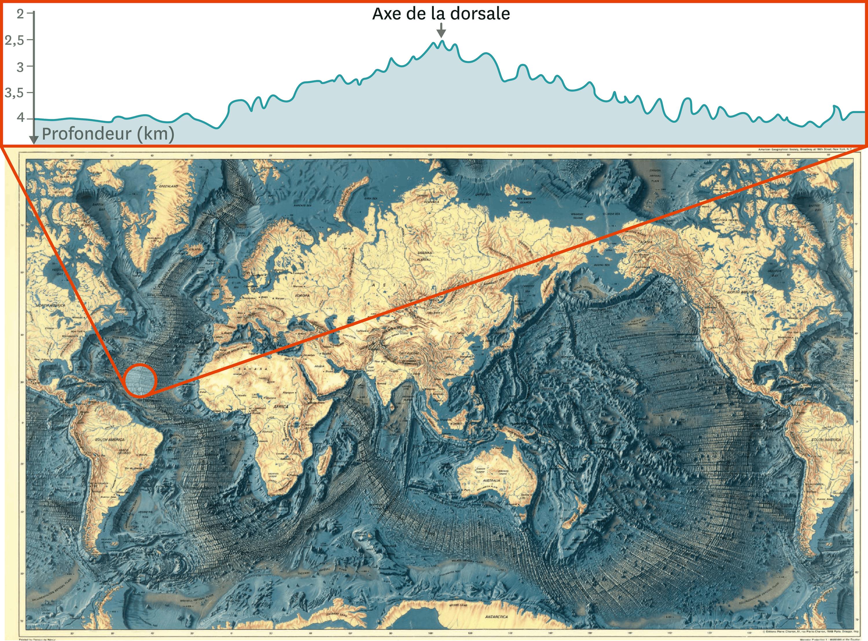 <stamp theme='svt-green1'>Doc. 4</stamp> La carte des reliefs des fonds marins et une coupe au niveau de la dorsale Atlantique Nord.