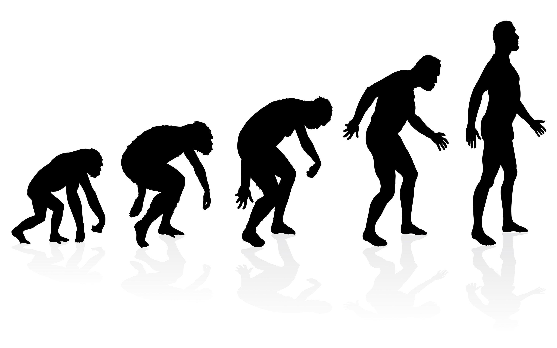 <stamp theme='svt-green1'>Doc. 2</stamp> Une autre conception fausse de l'évolution.