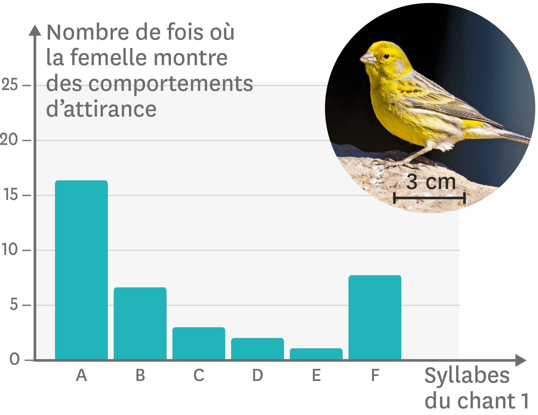 <stamp theme='svt-green1'>Doc. 6</stamp> Les effets des différentes syllabes du chant 1 sur l'attirance des femelles.