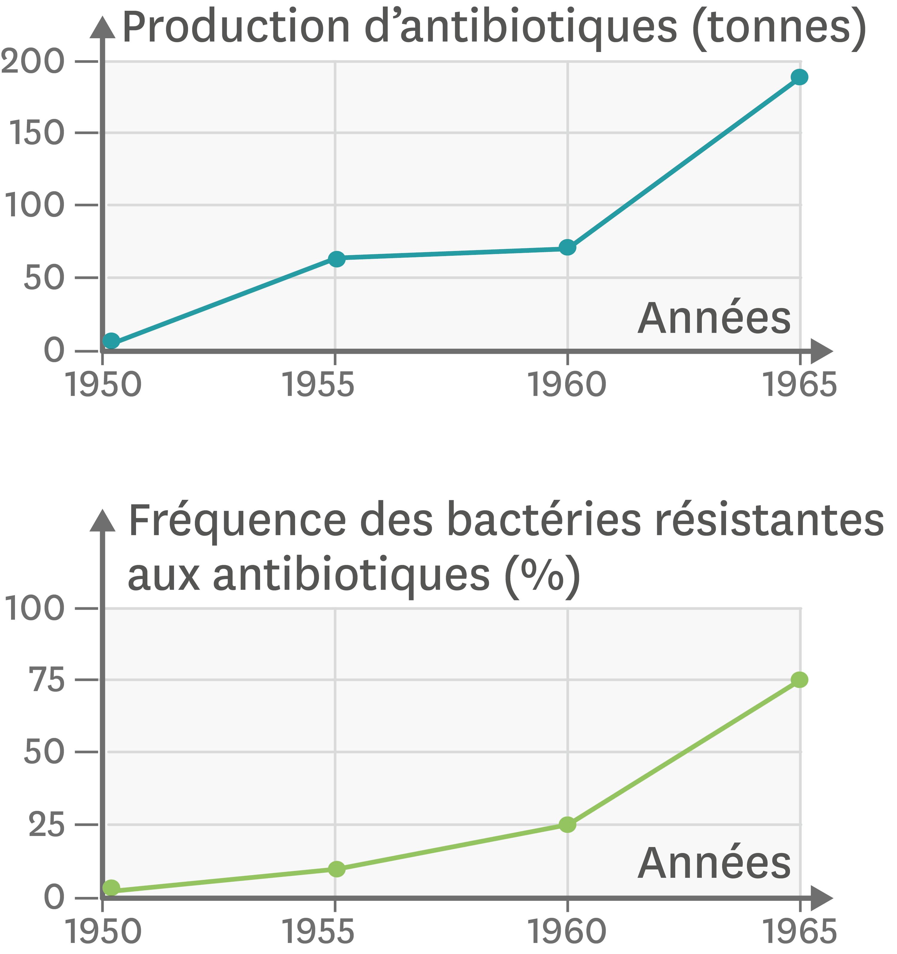<stamp theme='svt-green1'>Doc. 1</stamp> Les antibiotiques et la multirésistance des bactéries au Japon depuis 1950.