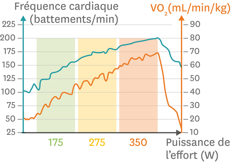 <stamp theme='svt-green1'>Doc. 1</stamp> Les variations de la fréquence cardiaque et de la consommation de dioxygène pour un effort physique d'intensité croissante.