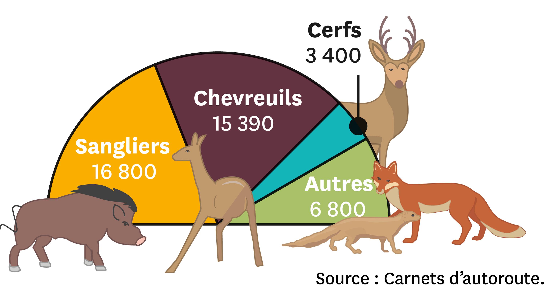 <stamp theme='svt-green1'>Doc. 3</stamp> Les collisions recensées entre des automobilistes et la faune locale sur l'autoroute en France en 2008.