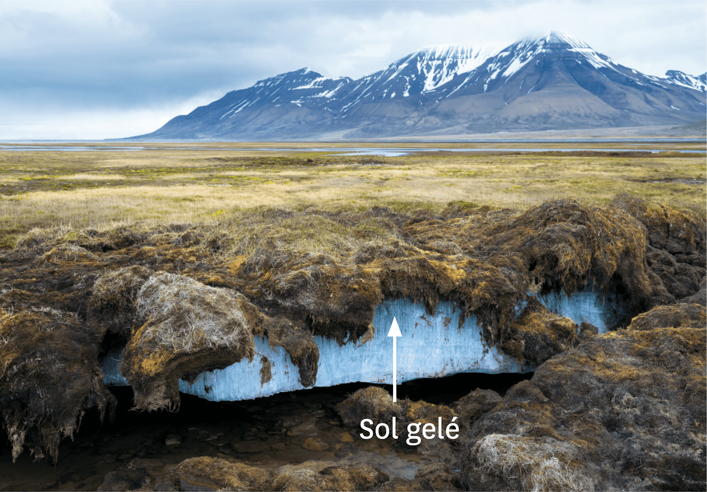 <stamp theme='svt-green1'>Doc. 1</stamp> Le permafrost.