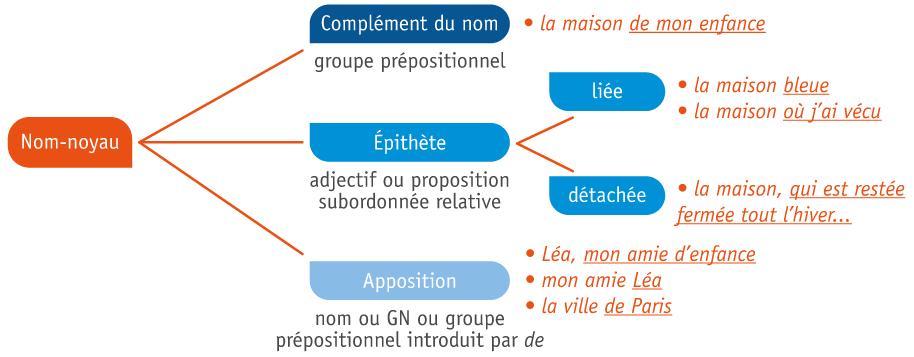À l'intérieur du groupe nominal : les fonctions liées au nom