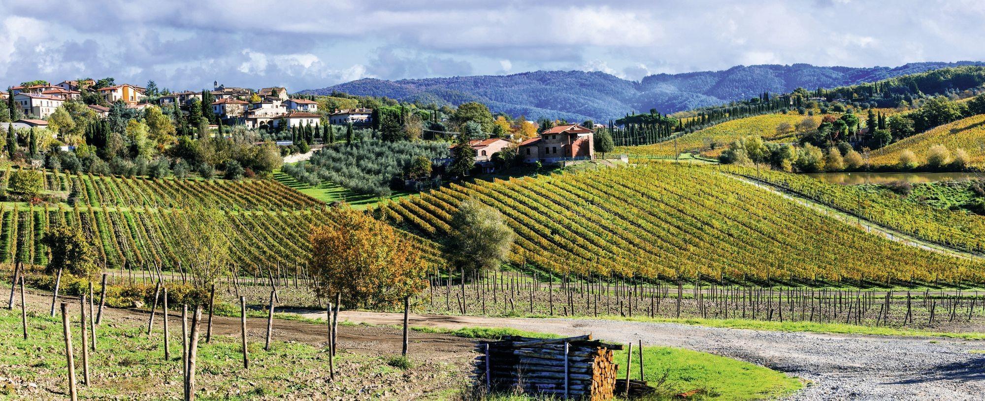 La région de Chianti, réputée pour l'œnotourisme