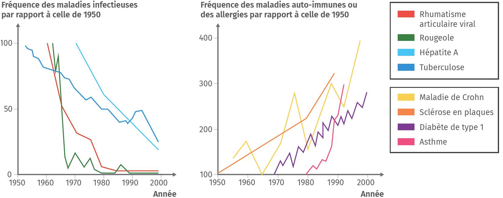 Fréquence des maladies infectieuses et auto-immunes ou des allergies entre 1950 et 2000