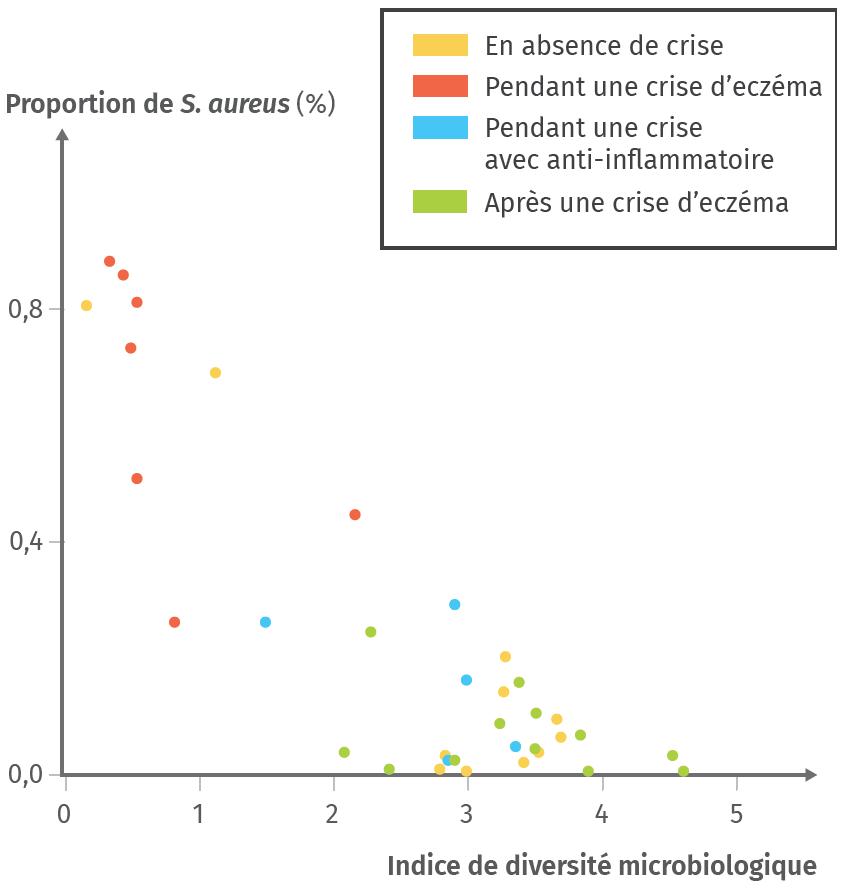 Proportion de Staphylococcus aureus et diversité du microbiote de la peau chez des patients souffrant d'eczéma à différents moments.