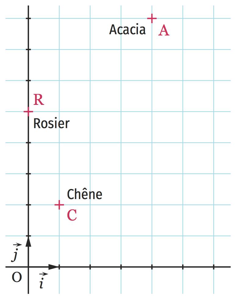 Synthèse équations de droites