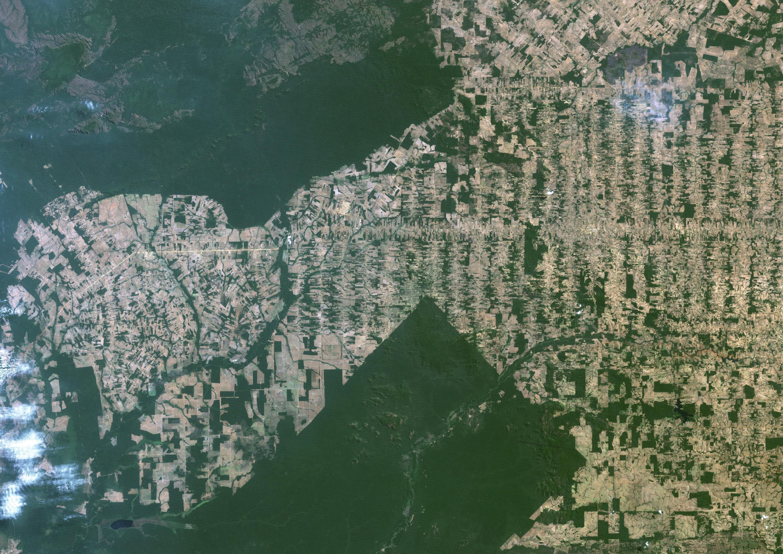 Une image satellite montre la déforestation dans le Rondônia au Brésil, en 2011.