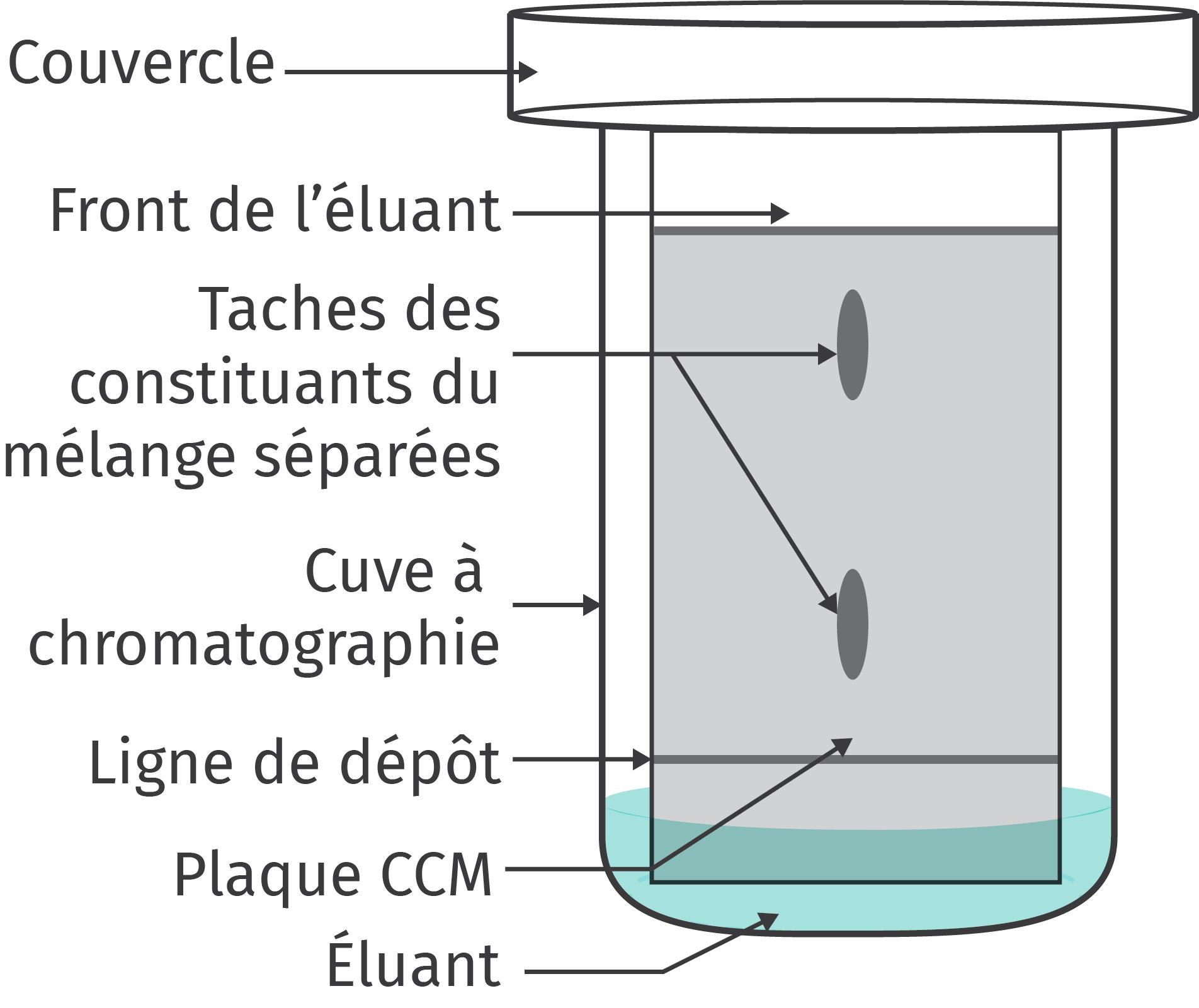 Schéma de la CCM