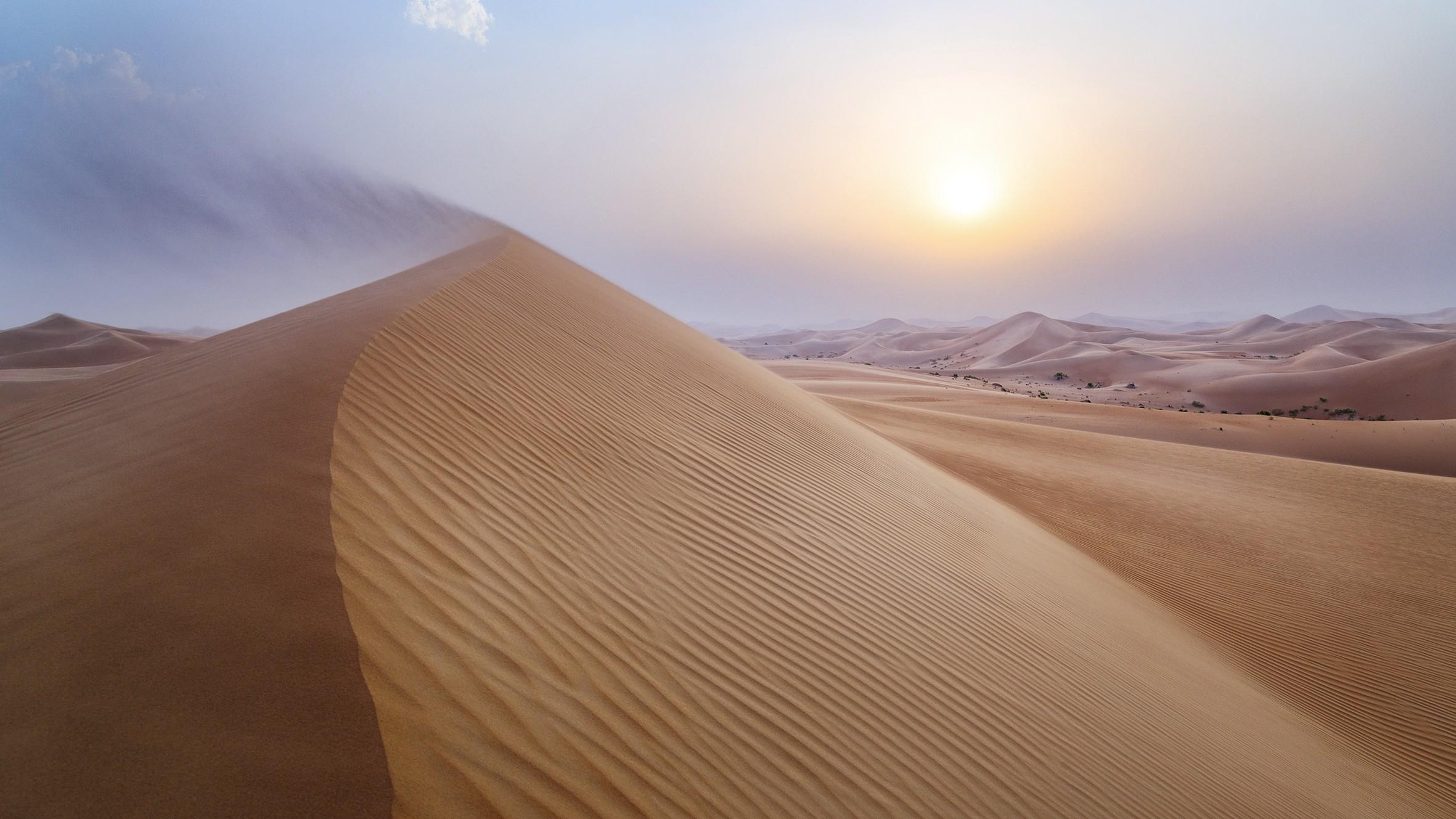 Dune de sable à Abu Dhabi
