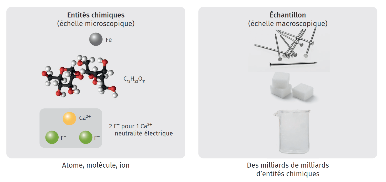 La matière vue à l'échelle micro/macroscopique
