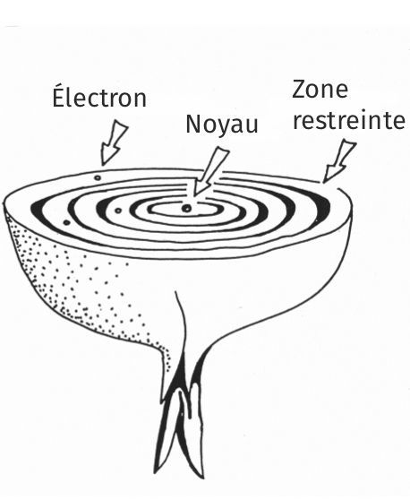 Modèle de Bohr et mécanique quantique