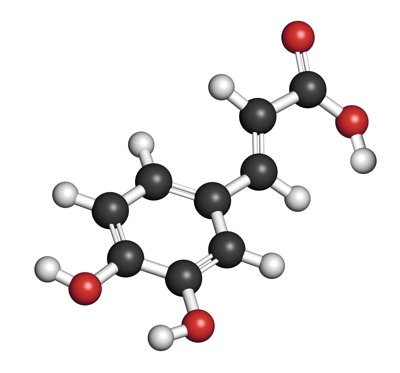 Modèle moléculaire de l'acide caféïque