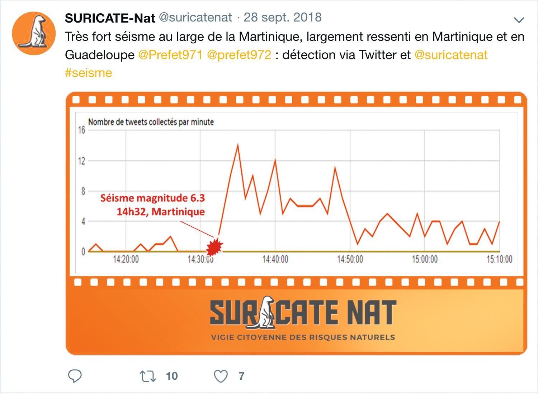Suricate-Nat